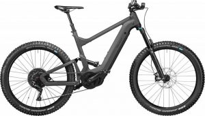 Riese & Müller Delite mountain touring Bosch – Modell 2021